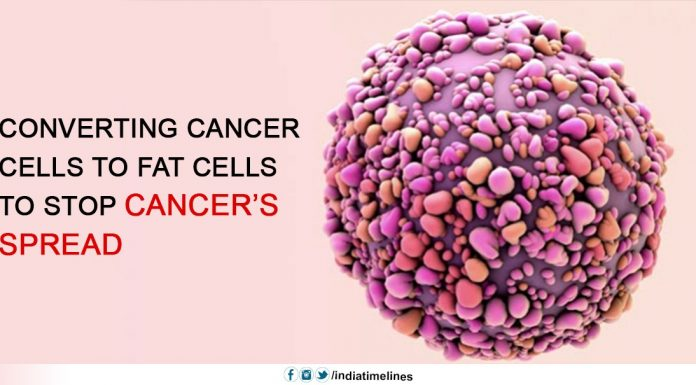 Converting Cancer Cells to Fat Cells to Stop Cancer's Spread