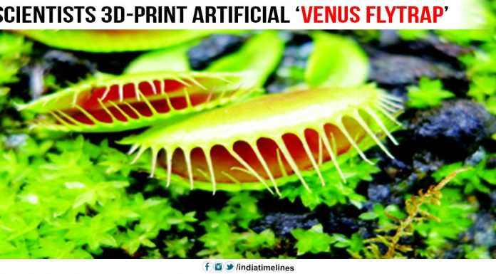 Scientists 3D-print artificial 'Venus flytrap'
