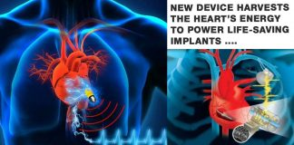 New device harvests the heart's energy to power life-saving implants