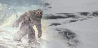 Indian army claims to have sighted footprints of Yeti