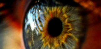 3D printed artificial corneas mimic human eyes
