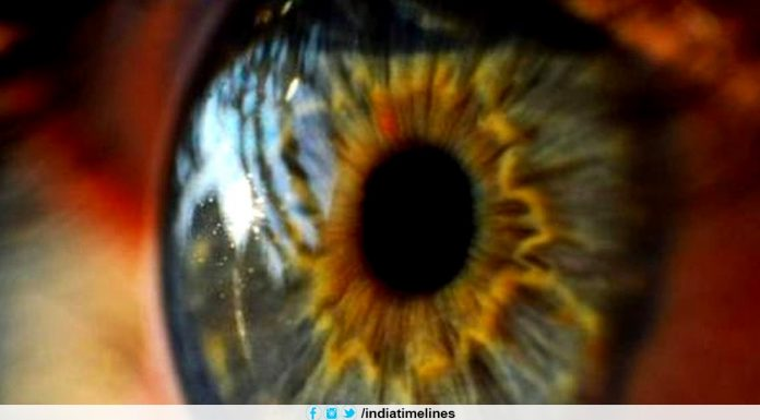 3D printed artificial corneas mimic human eyes