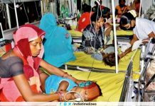 138 Deaths So Far Due To Encephalitis Fever