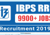 IBPS RRB Application Form 2019 Begins