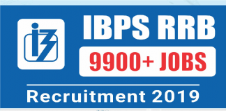 IBPS RRB Application Form 2019 Begins