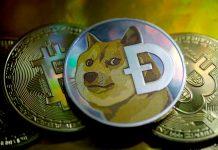 Dogecoin, Bitcoin, Ethereum Prices: Crypto caused havoc