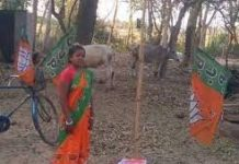 Day-to-day laborer's wife Chandana Bauri reached the assembly on a BJP ticket